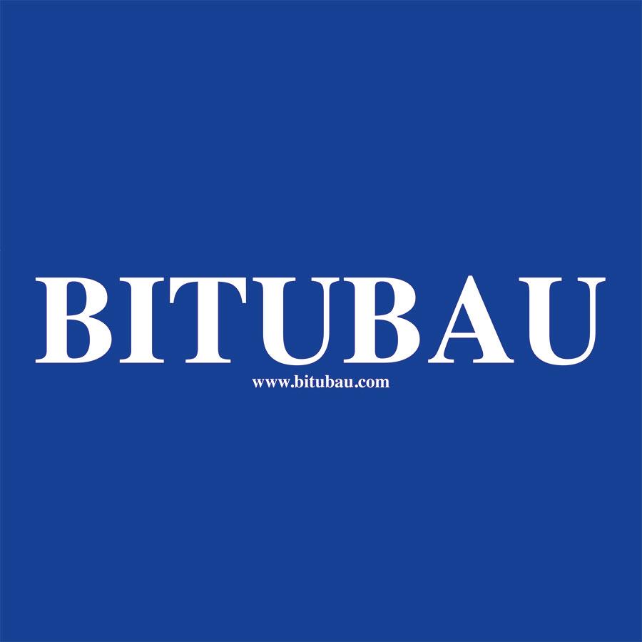BITUBAU-Logo_4c
